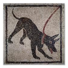 Animal en Italie