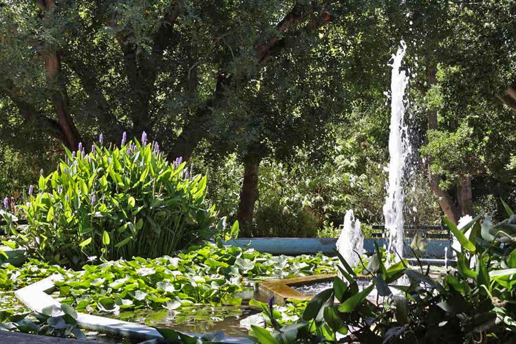 orto botanico de Cagliari