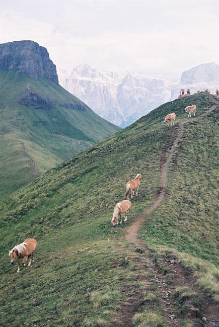 Randonnées dans les Dolomites