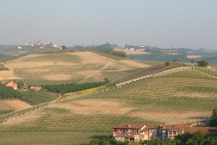 Grinzane Cavour et le vin Barolo