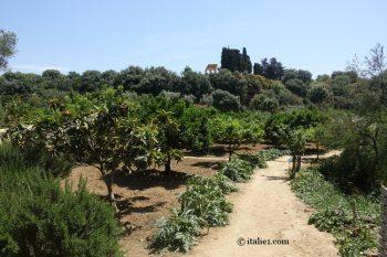 Jardin de Kolymbethra à Agrigente